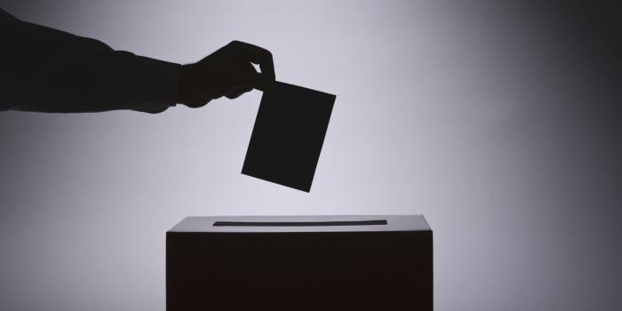 Should You Vote?